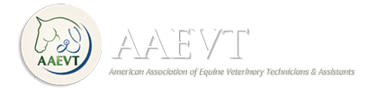 American Association of Equine Veterinary Technicans & Assistants