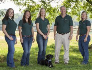 Allegheny Equine Veterinarians