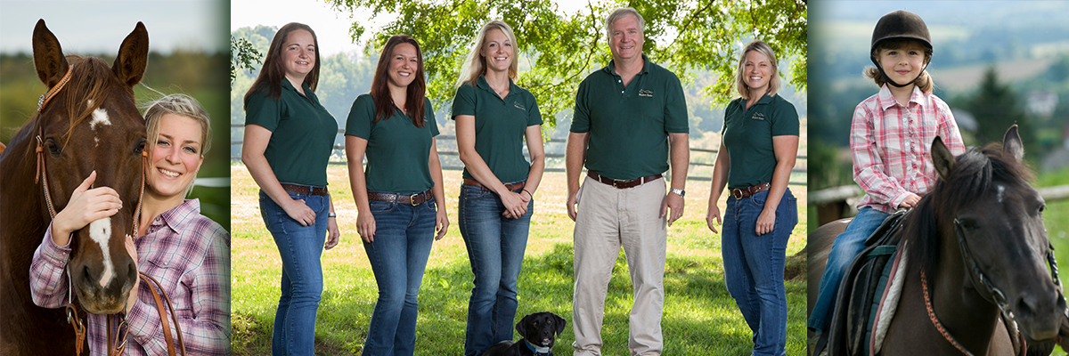 Allegheny Equine – Experience  Innovation  Dedication